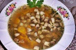 Supa cu ciuperci