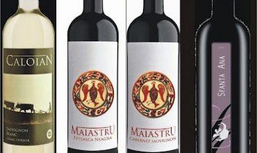 Concurs -Vinul potrivit si bucate bine gatite