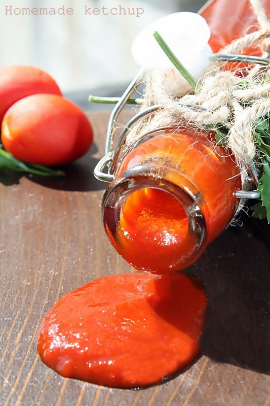 ketchup-de-casa-angelica-nistor