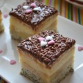 prajitura-cu-mere-mac-si-crema-de-vanilie-1