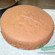Reteta blat de tort cu cacao