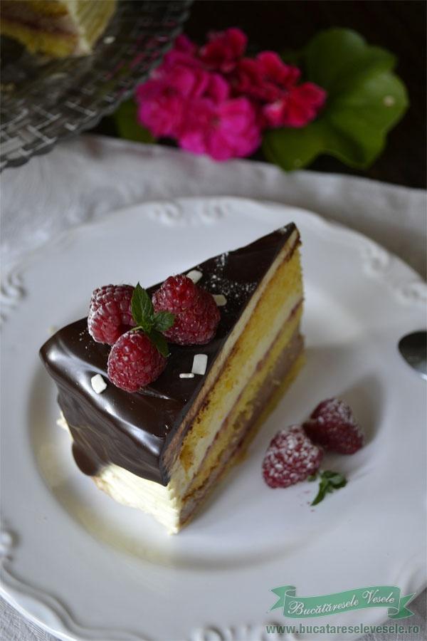 tort-fara-gluten-cu-vanilie-ciocolata-si-zmeura-2