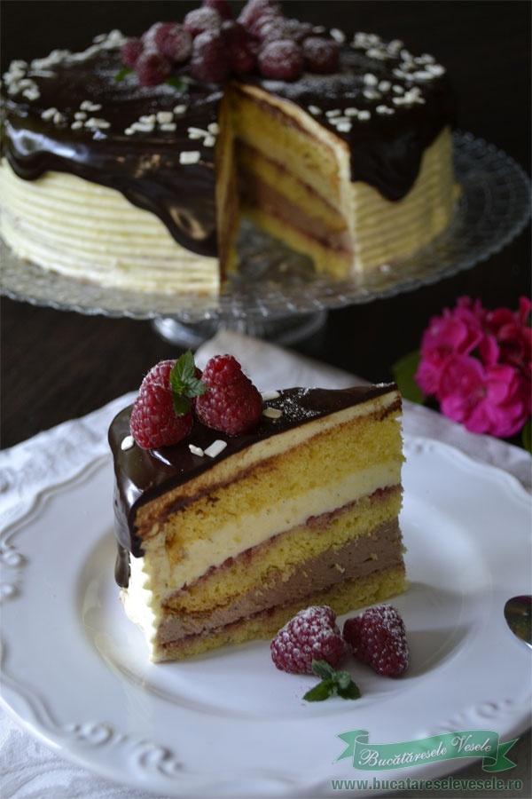 tort-fara-gluten-cu-vanilie-ciocolata-si-zmeura-3