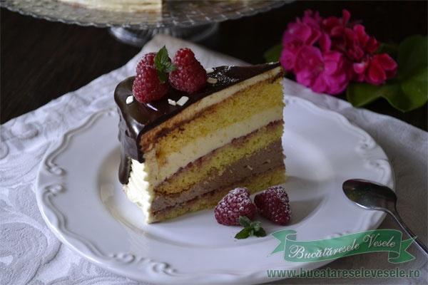 tort-fara-gluten-cu-vanilie-ciocolata-si-zmeura-4
