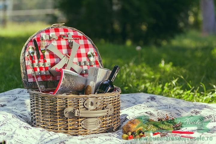 cos-de-picnic