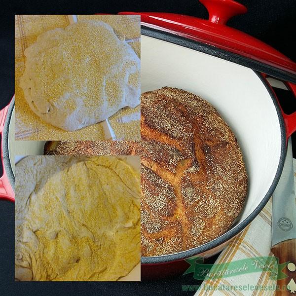 Paine taraneasca cu cartofi fara framantare